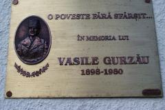 Micherechi-Placa-Vasile-Gurzau